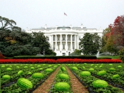 White House &quot;Watermelon Patch&quot;